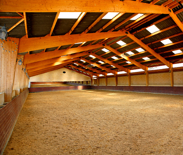 Lieux equinos academia de barcelona for Manege interieur